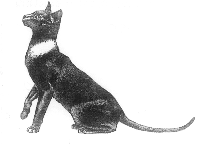 แมวมงคล